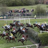 The Grand National Race